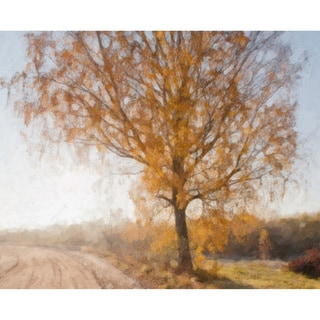 'Country Road' Canvas Art