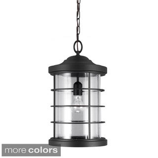 Sauganash 1-light Clear Seeded Glass Outdoor Pendant