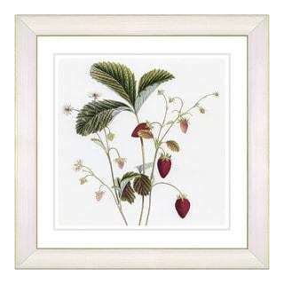 Zhee Singer'Vintage Botanical No 06 - White' Framed Fine Art Print