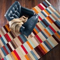 Hand-Tufted Dexter Contemporary Geometric Area Rug-(5' x 8')