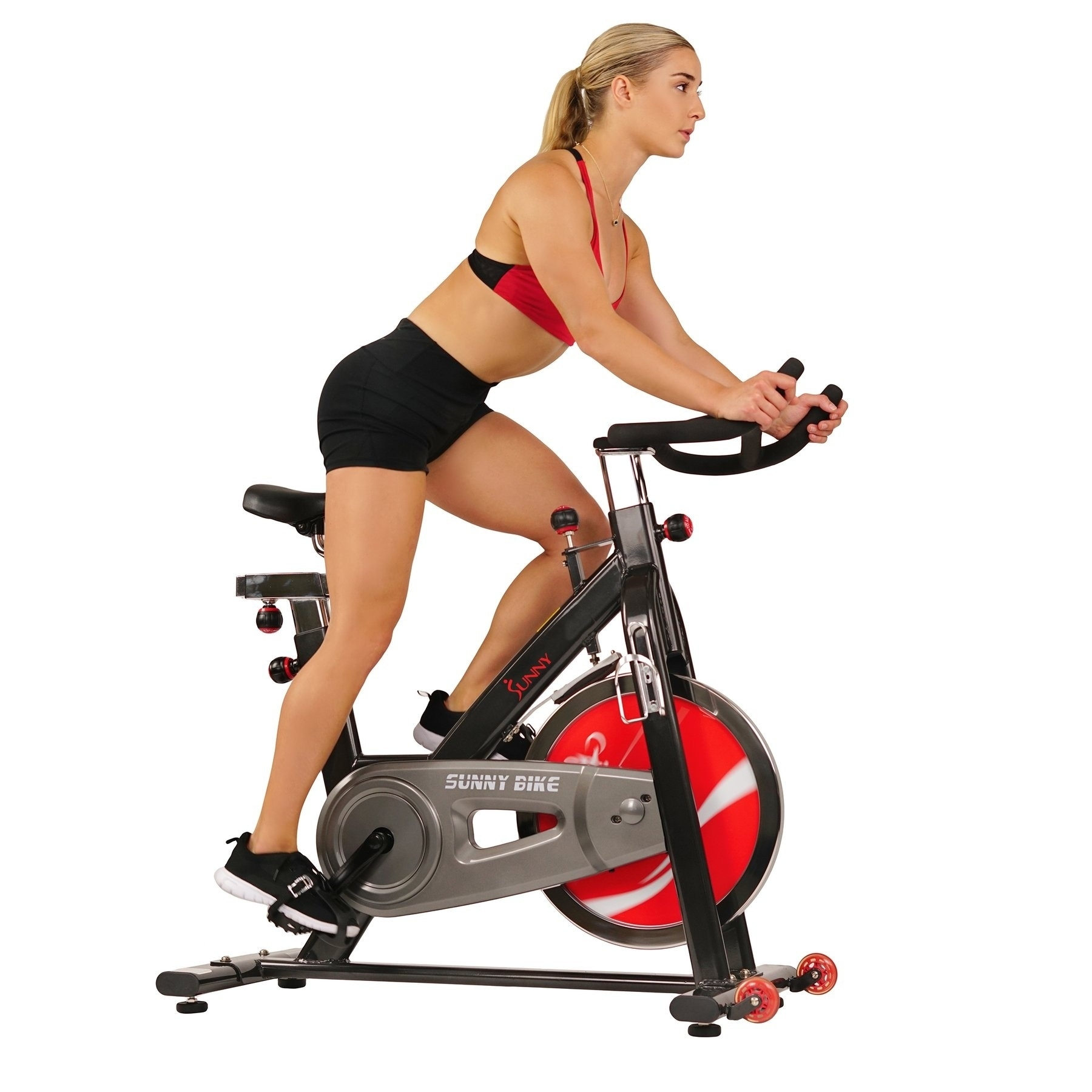 Sunny Health&Fitness Sunny Health Fitness Chain Drive Indoor Cycling Bike at Sears.com