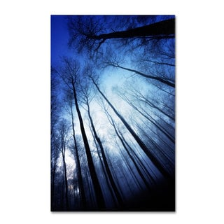 Philippe Sainte-Laudy 'Blue Forest' Canvas Art