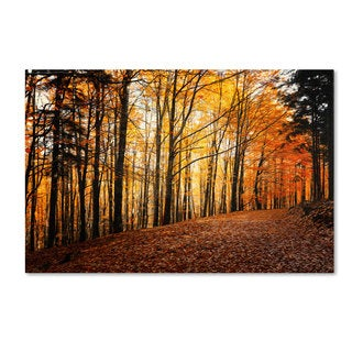 Philippe Sainte-Laudy 'Autumn Leaves Pathway' Canvas Art
