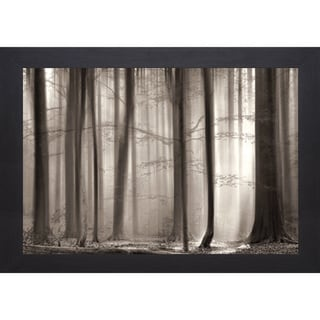 Lars Van de Goor 'The Cloaking Woods' Framed Print