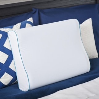 Priage MyGel� Memory Foam Contour Pillow with Cover