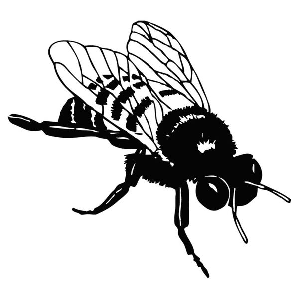 Bee Fly Insect Vinyl Wall Art Decal