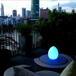 Boston LED Lighting Home Decoration Egg