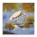 Kingston 'Beautiful Egret in Marsh-land' Gallery-wrapped Canvas Art