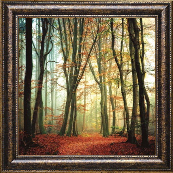 Colorfall II' by Lars Van de Goor Framed Art Print