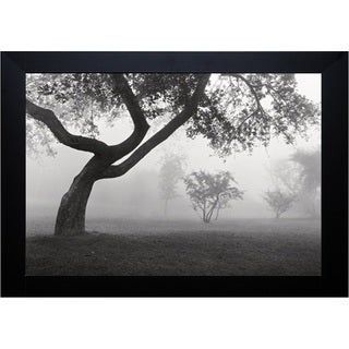 Into the Mist' by Monte Nagler Framed Art Print