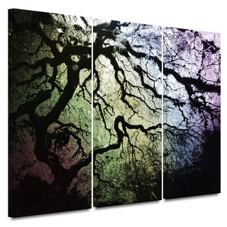 John Black 'Under the Rainbow: Japanese Tree' Gallery-Wrapped Canvas (3-Piece Set)