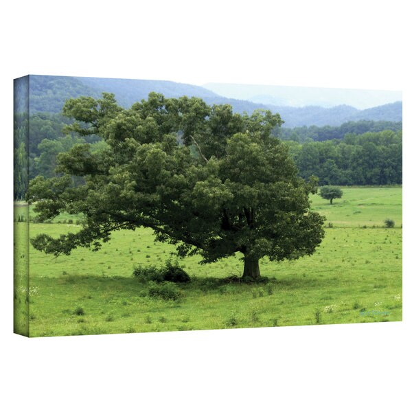 Herb Dickinson 'Lord of Trees' Gallery-Wrapped Canvas