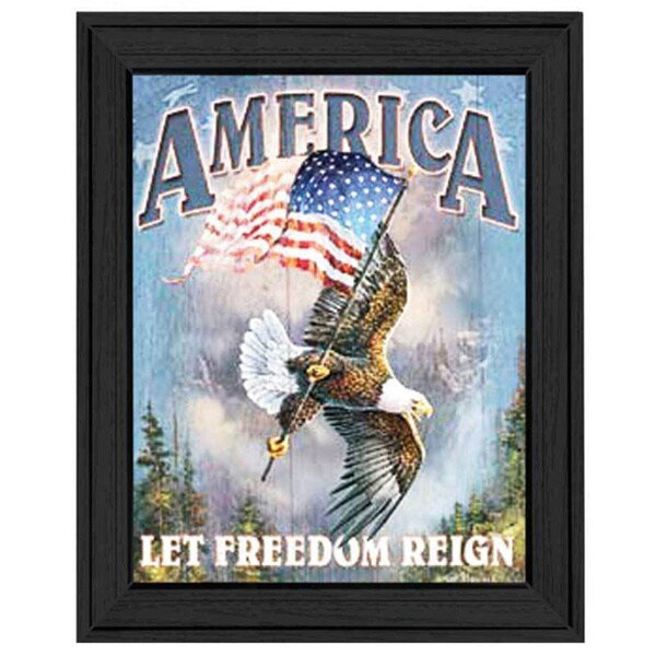 'America, Let Freedom Reign' Framed Tin Sign