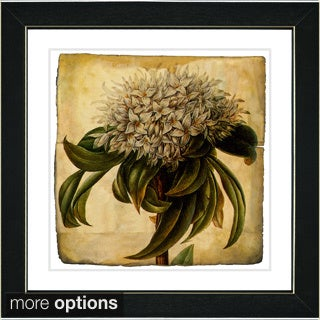 Zhee Singer 'Vintage Botanical No 37 - Antiqued' Framed Fine Art Print