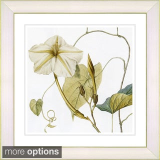 Zhee Singer 'Vintage Botanical No 29 - White' Framed Fine Art Print