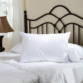 Perfectly Plumped Feather and Down Pillow (1 or Set of 2)