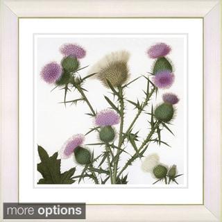 Zhee Singer 'Vintage Botanical No 038 - White' Framed Fine Art Print