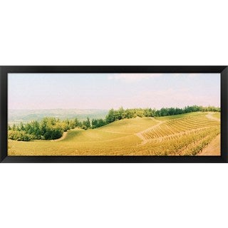 'Napa Valley, California' Framed Panoramic Photo