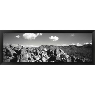 'Saguaro National Park, Tucson, AR' Framed Panoramic Photo