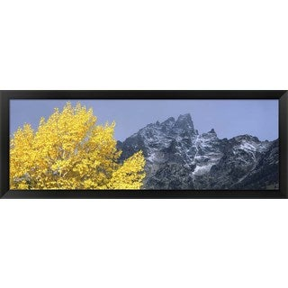 'Grand Teton National Park, Wyoming' Framed Panoramic Photo