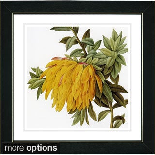 Studio Works Modern 'Vintage Botanical No 44 - White' Framed Fine Art Print