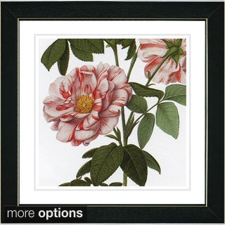 Studio Works Modern 'Vintage Botanical No 49 - White' Framed Fine Art Print