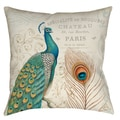 Majestic Beauty Peacock 19-inch Throw Pillow