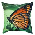 20 x 20-inch Colorful Blue Butterfly Outdoor Throw Pillow (India)