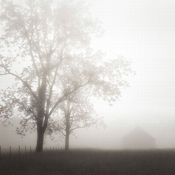 Nicholas Bell 'Farmland, Appalachia, 2013' Canvas Art