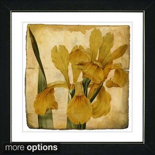 Zhee Singer 'Vintage Botanical No 46 - Antiqued' Framed Fine Art Print