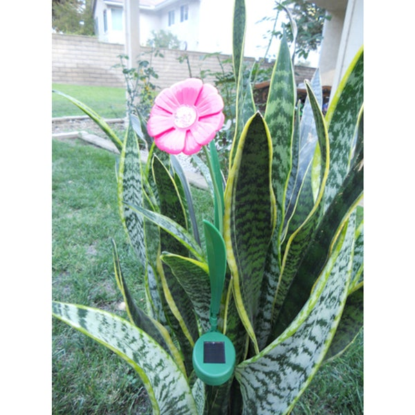 Ballerina Pink Paddle Trumpet Flower Solar Lights (Set of 2)