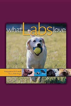 What Labs Love (Hardcover)