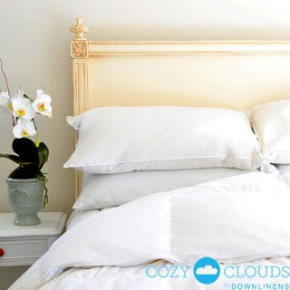 CozyClouds by DownLinens Basic White Goose Down Comforter