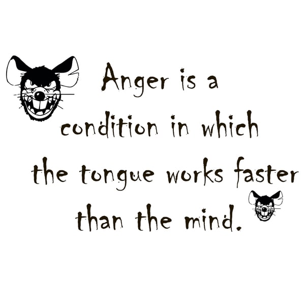 Quote About Anger Vinyl Wall Art