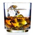 Drinique Elite 10-ounce Rocks Plastic Glass (Set of 4)
