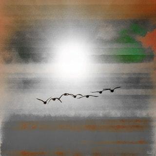 Parvez Taj 'Into the Sun' Canvas Art