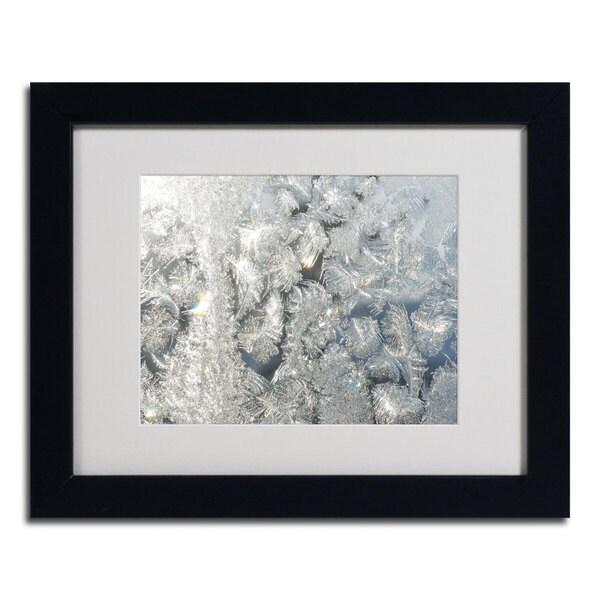 Kurt Shaffer 'Frost Pattern in the Sun' Framed Matted Art