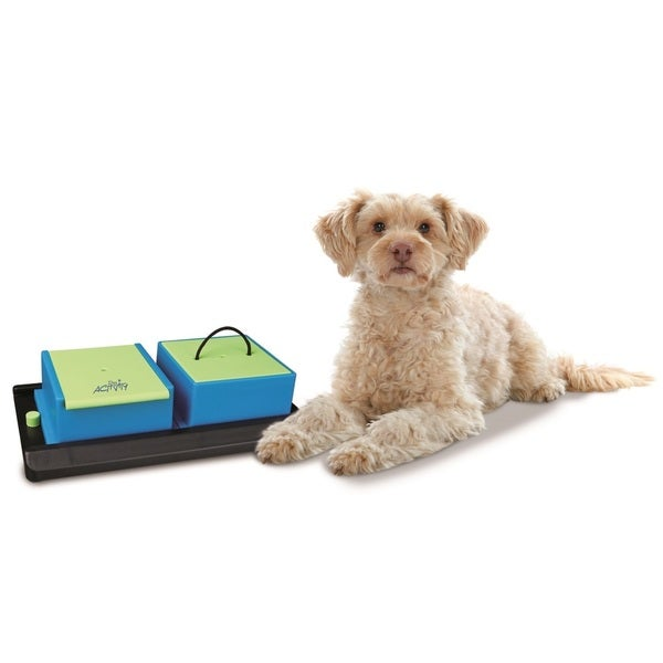 Trixie Poker Box Vario Interactive Pet Toy (Level 1)