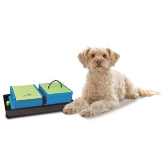Trixie Poker Box Vario Interactive Pet Toy (Level 1)