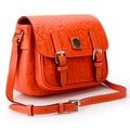 Dooney & Bourke Small Safari Orange Crossbody Handbag