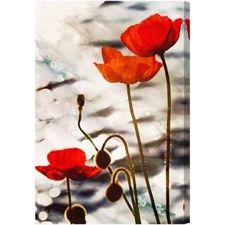 Oliver Gal 'Poppy Dusk' Canvas Art