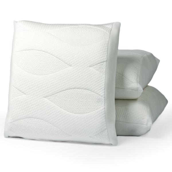 Octaspring Evolution Plus Memory Coil Pillow with Bonus Pillow
