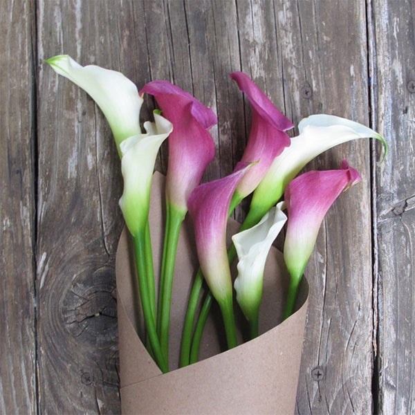 The Bouqs Volcano Collection 'Elegant Twist' Original Flower Bouquet 13058965