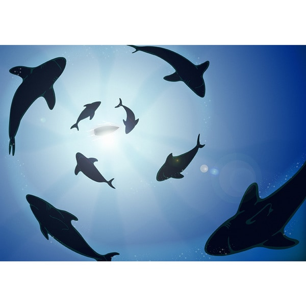 Hungry Sharks Waiting' Photography Art Canvas Print