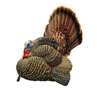 Zink Avian X LCD Strutter Collapsible Turkey Decoy