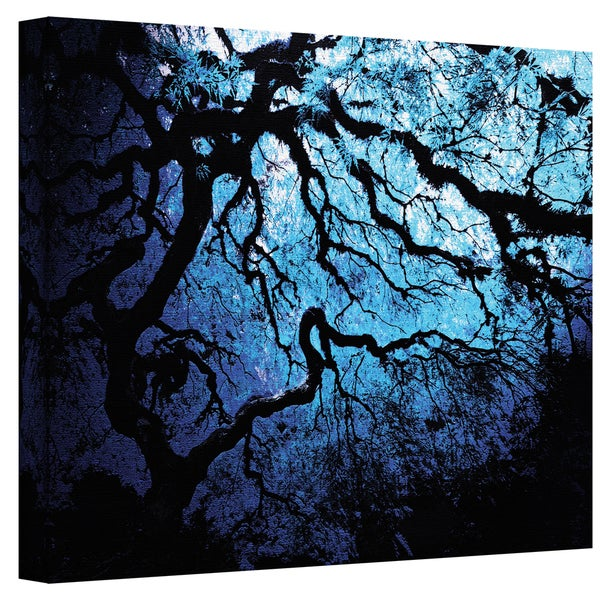 John Black 'Japanese Ice Tree' Gallery-Wrapped Canvas