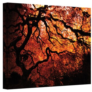 John Black 'Fire Breather: Japanese Tree' Gallery-Wrapped Canvas
