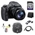 Sony Cyber Shot DSC-HX300 Black Bridge Digital Camera 16GB Bundle
