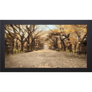 Tim Wampler 'Central Park I' Framed Art Print