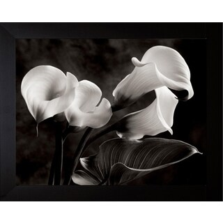 Sondra Wampler 'Calla Lilies No. 1' Framed Wall Art Print